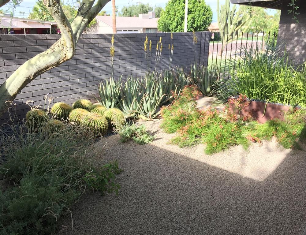 Modern Phoenix Residence