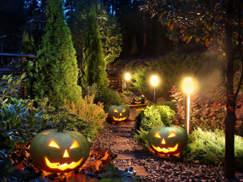 Fun Ways to Decorate for Halloween and Christmas in a Rock Landscape