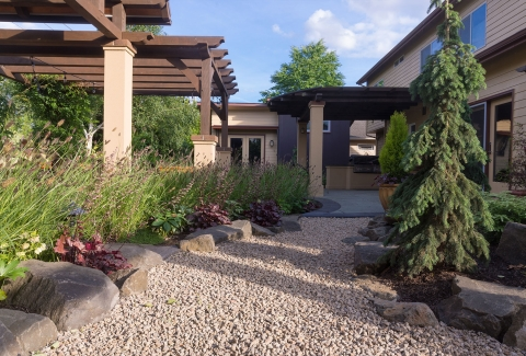 Shrubs and small plants that grow well and look great in a rock landscape